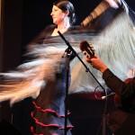 Flamenco Dancer, NinjaTED